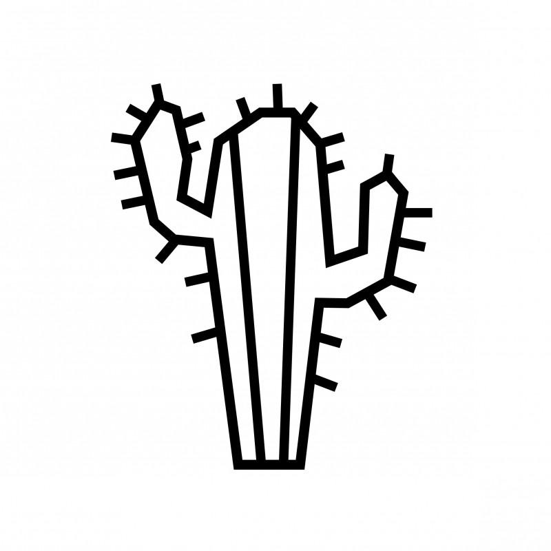 Deco DIY murale en masking tape cactus noir
