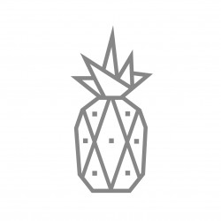 kit diy masking tape ananas argenté