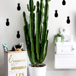 Stickers déco mur chambre ananas noir