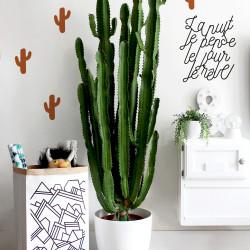 Stickers cactus cuivre déco mur