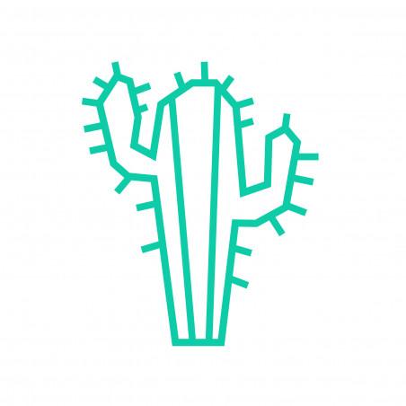 Deco DIY murale en masking tape cactus menthe