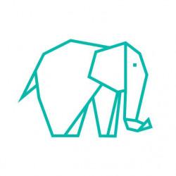 kit diy masking tape elephant menthe